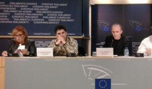 joe-maria-erauskin-en-el-parlamento-europeo