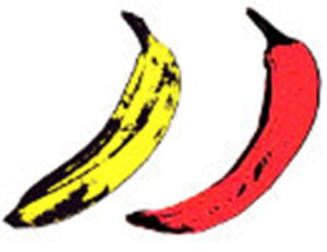 Logo Similar Rock 1